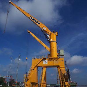 Cẩu cảng 40 tấn